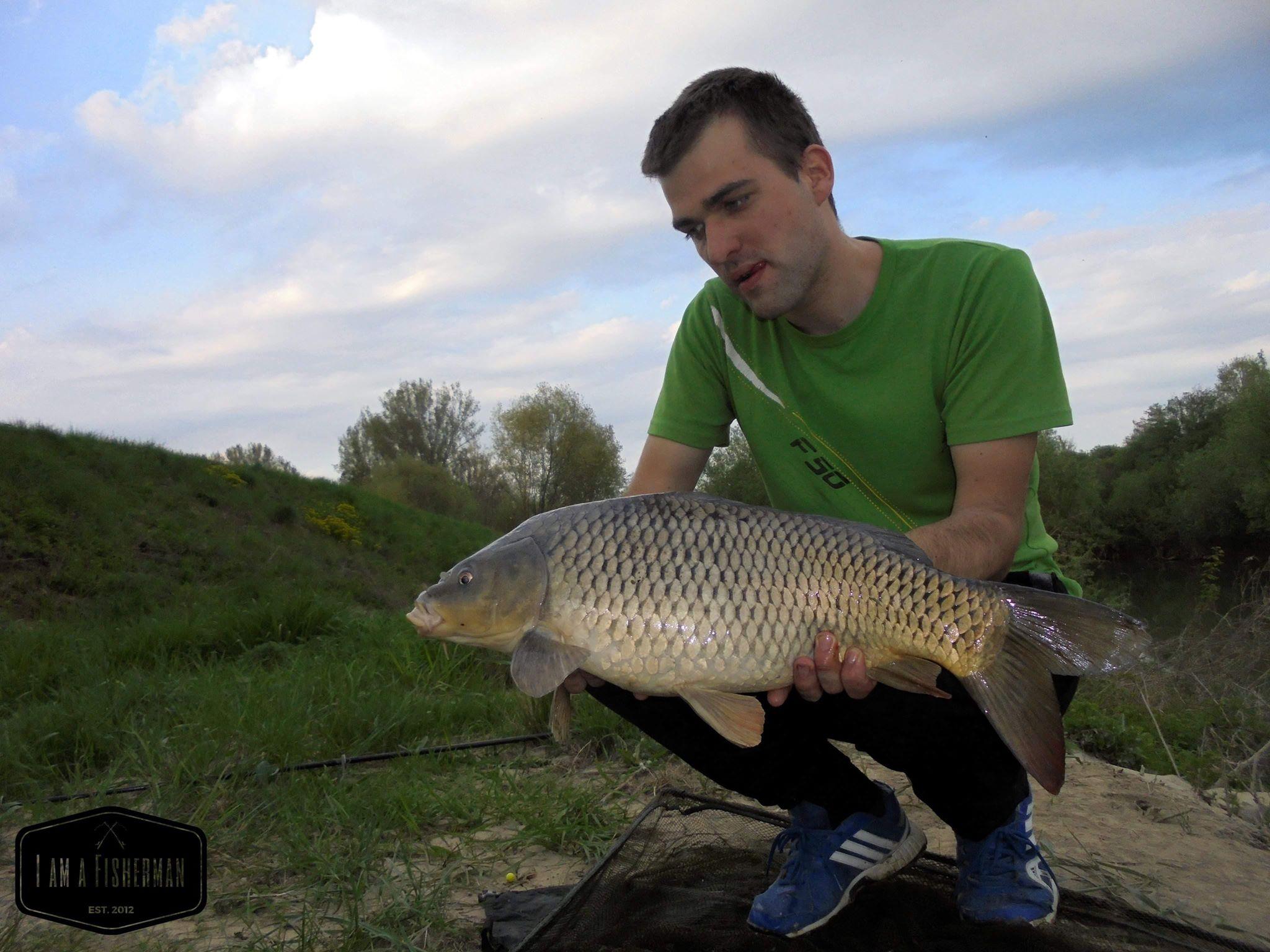 Jarný lov kapra na rieke